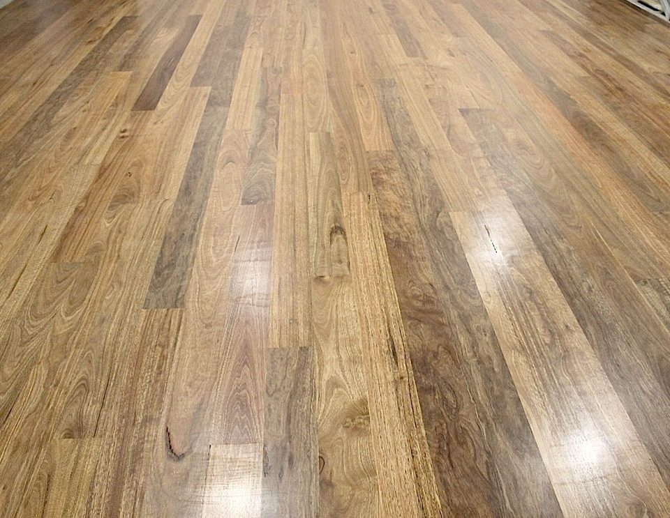 Nsw Spotted Gum Timber Flooring Sanding And Polishing